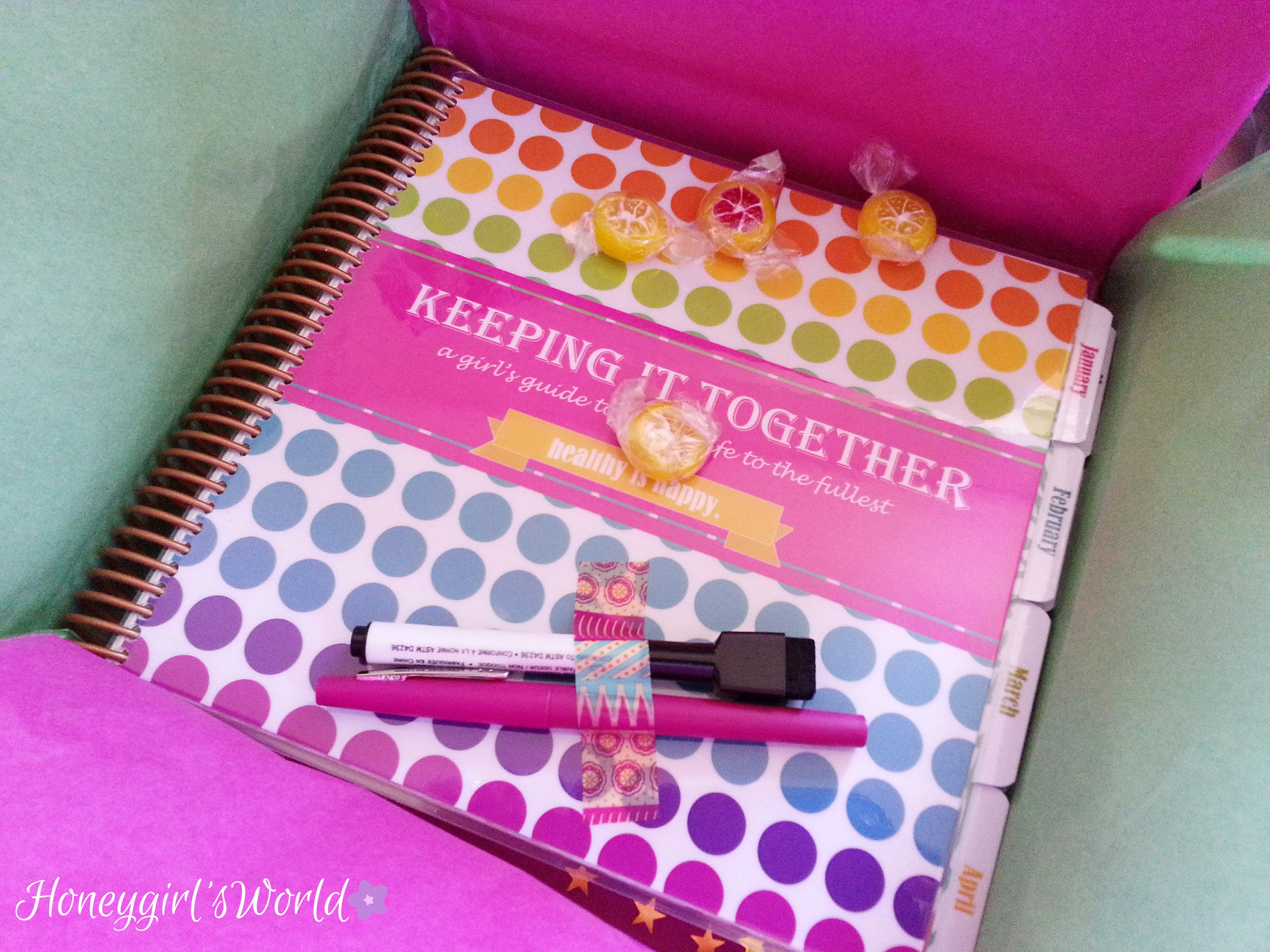 Get Organized with the Keeping It Together – 2014 Planner (Open box, reveal & my thoughts)