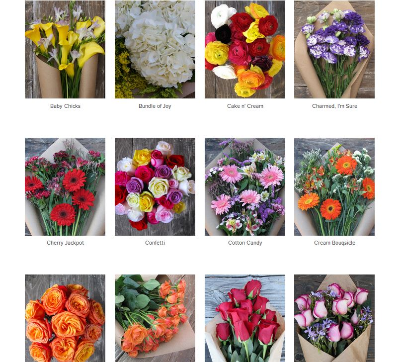 April Showers Bring May Flowers... Affordable bouquets from theBouqs ...