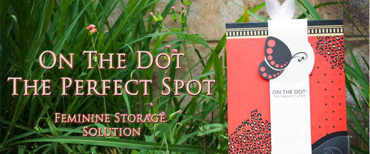 On The Dot The Perfect Spot – Feminine Storage Solution