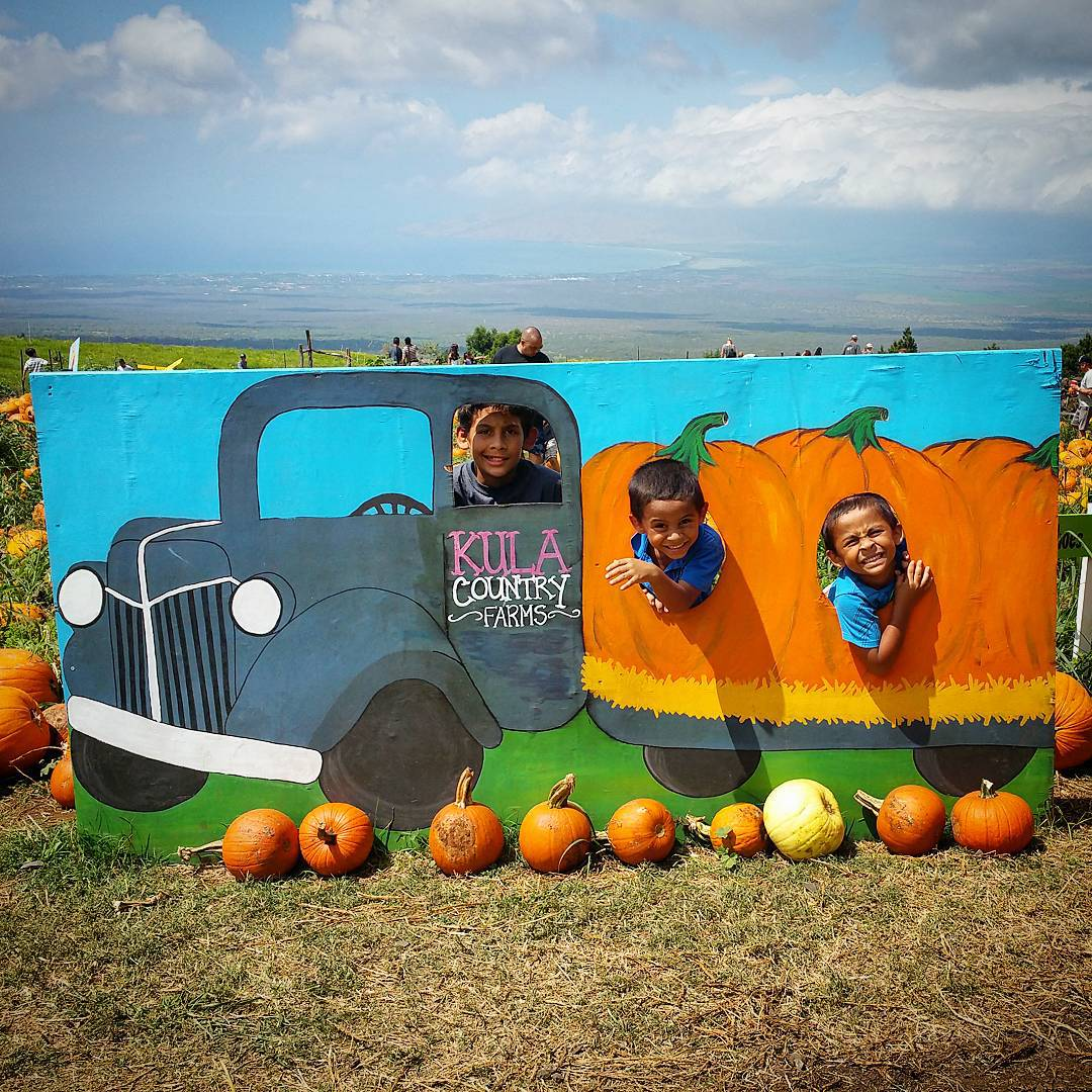Annual Trip To The Pumpkin Patch - Kahoohanohano Family Adventures