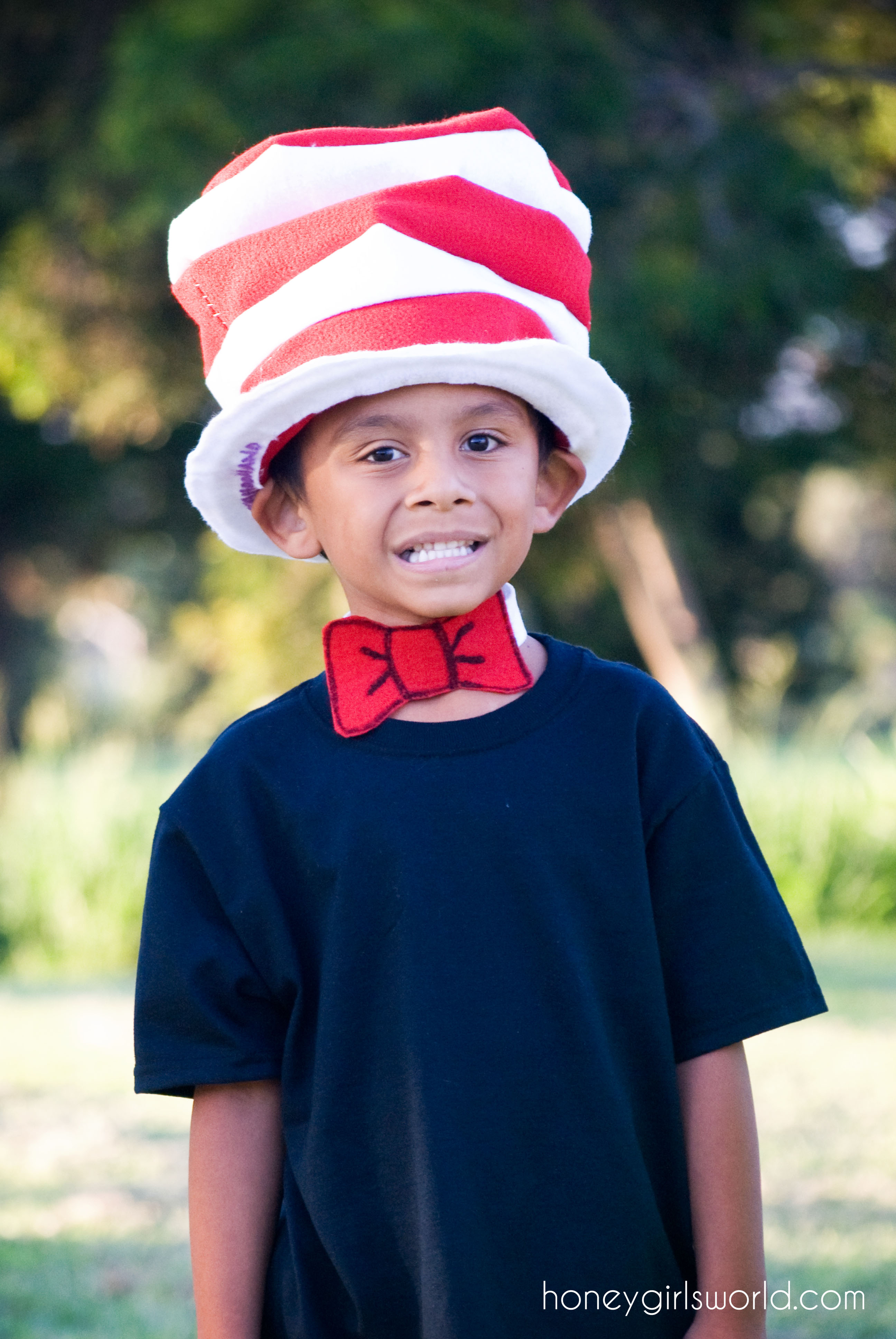 5b6b5b972e9 Book Character Dress Up Day Easy Diy Dr Seuss Cat In The Hat And