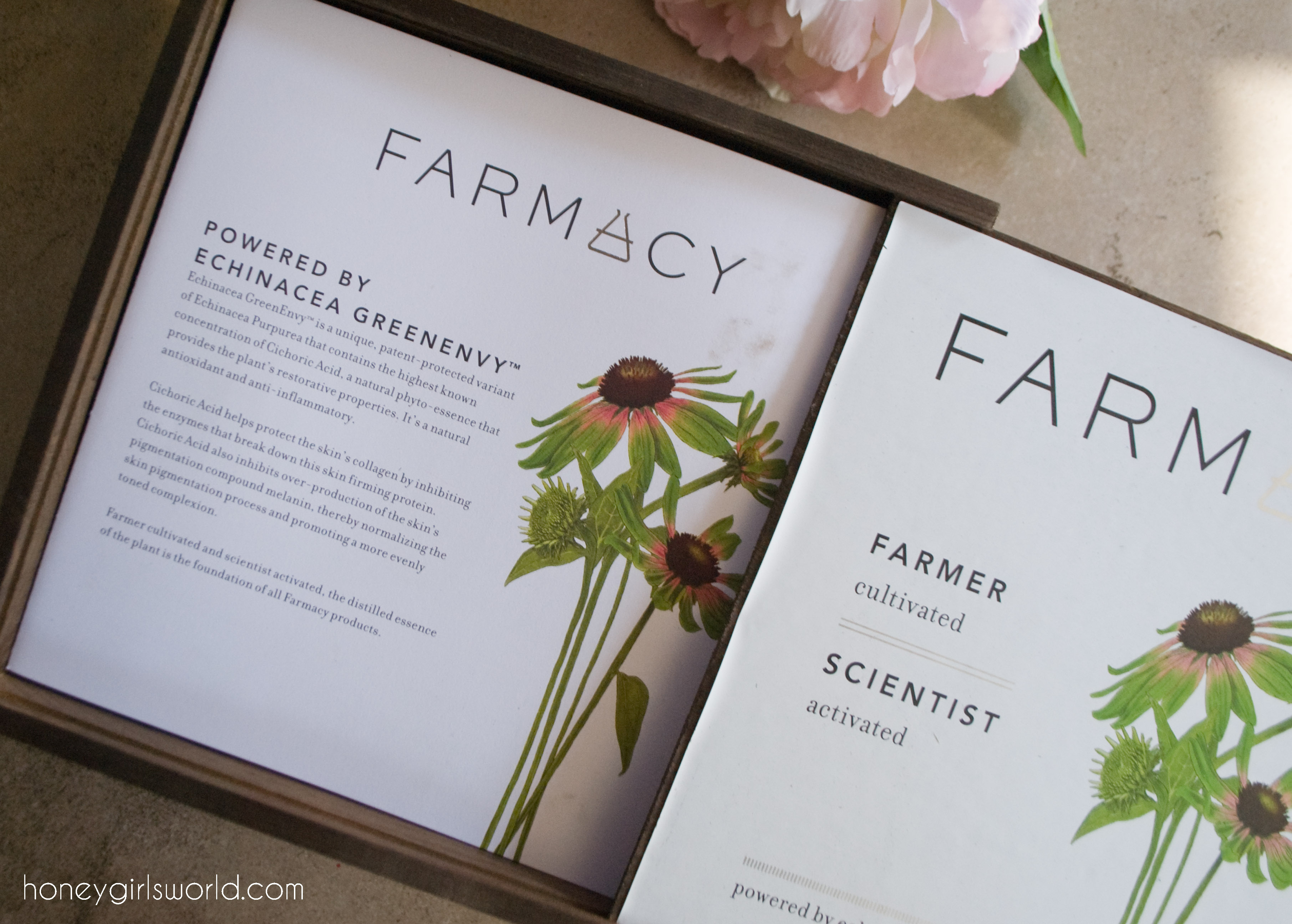 Farmacy Beauty, Sephora, Green Beauty, Farmacy, skin care,