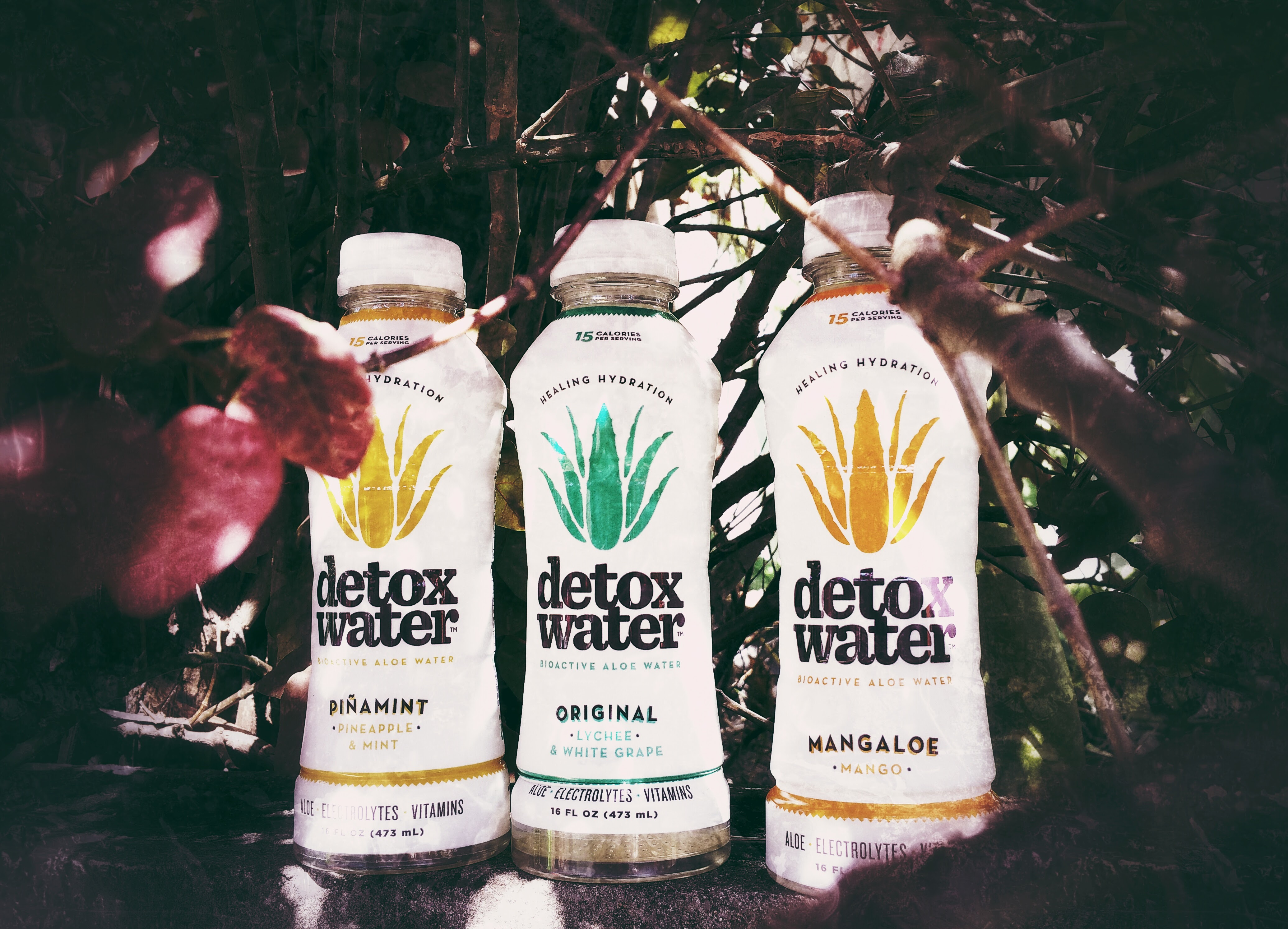 benefits of detox water Kourtney kardashian shares her recipe for the 'detox water' that she always   the health benefits of drinking lemon water as oppose to just.