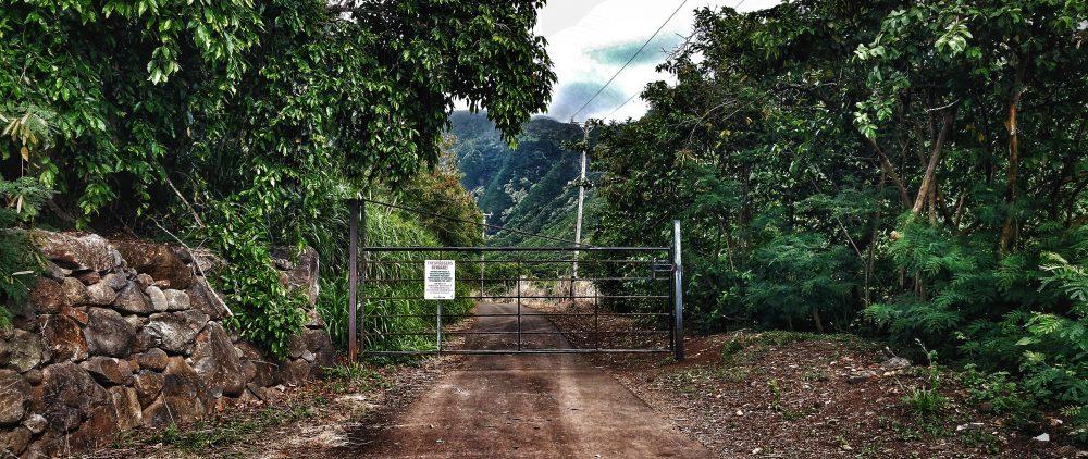 Maui, swinging bridges, hawaii, waihee valley trail, waihee valley, moutains, islands, tourists, our island home, sadness, over populated, home, maui home,
