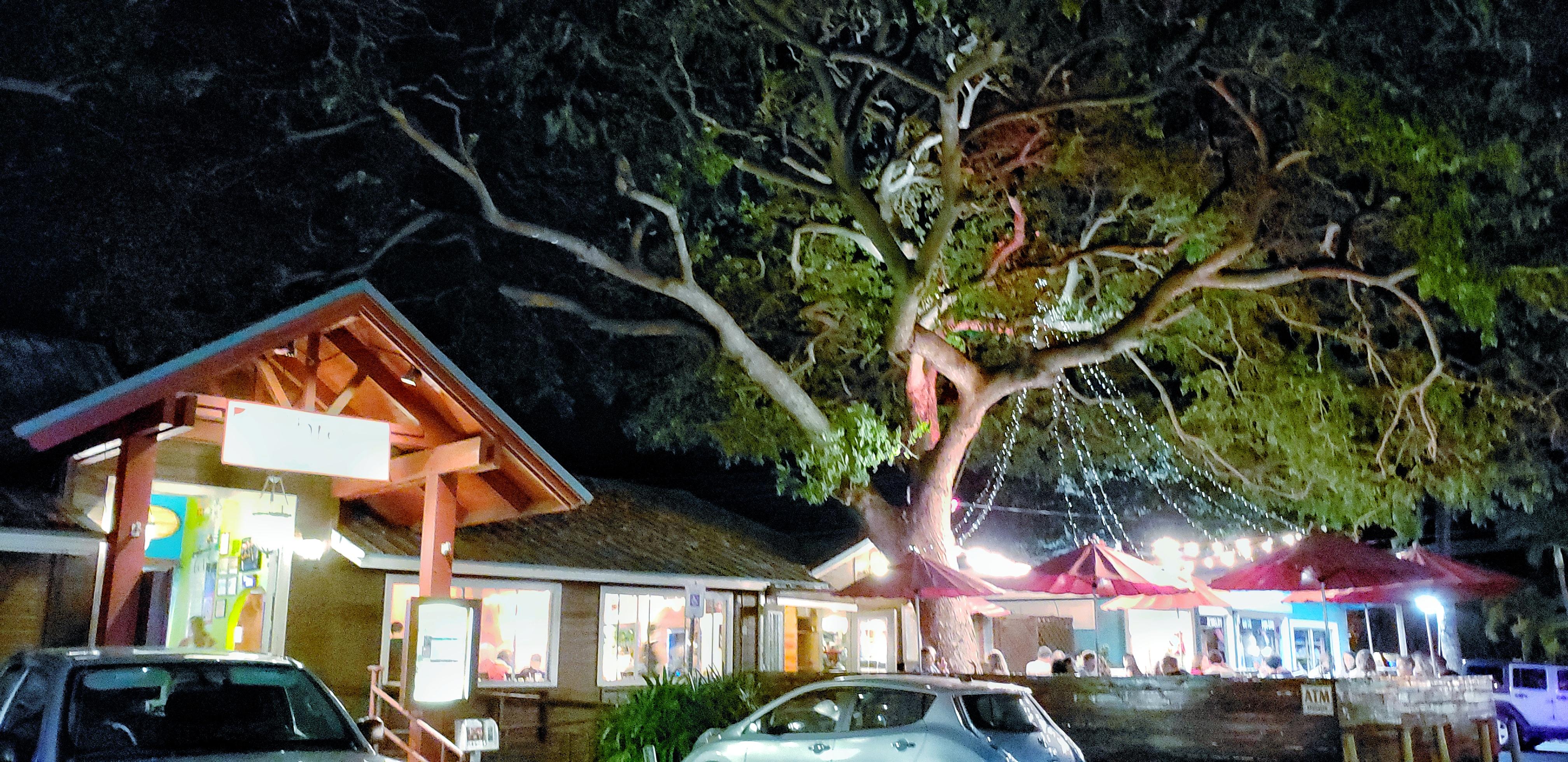maui eats, three's bar & grill, three's bar and grill, food, maui food, grinds, maui, maui travel guide, sushi, local grinds, hawaii grinds, maui grinds, tourist, what to do on maui, oysters,